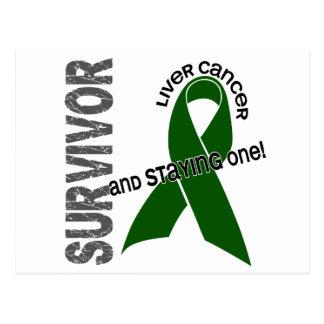 LIVER CANCER Survivor 1 Post Cards