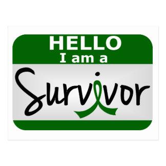 Liver Cancer Survivor 24.png Postcard
