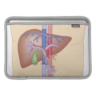 Liver Transplant Procedure MacBook Sleeve