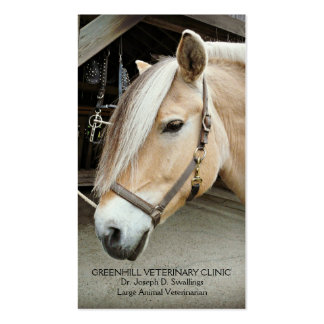 Livestock Large Animal  Horse Veterinarian Clinic Pack Of Standard Business Cards
