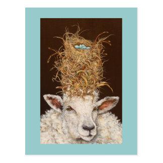 Livin' High on the Sheep postcard
