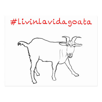Livin La Vida Goata Funny Goat Art Slogan Design Postcard