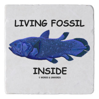 Living Fossil Inside Coelacanth Attitude Trivet