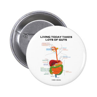 Living Today Takes Lots Of Guts (Digestive System) 6 Cm Round Badge