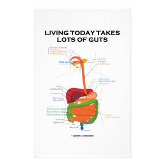 Living Today Takes Lots Of Guts Digestive System Customised Stationery