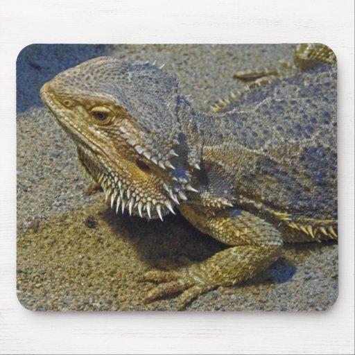 Living Under Fire - Bearded Dragon Mousepad