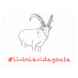 #LivinLaVidaGoata funny novelty goat postcard