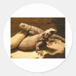 lizard 2 classic round sticker