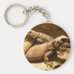 lizard 2 key chain