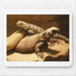 lizard 2 mousepads