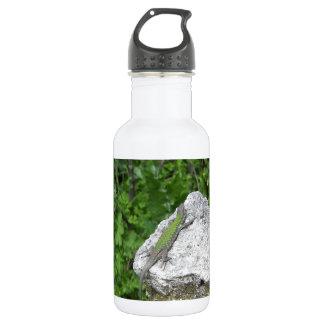 Lizard Basking In The Sun 532 Ml Water Bottle