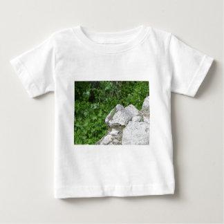 Lizard Basking In The Sun Baby T-Shirt