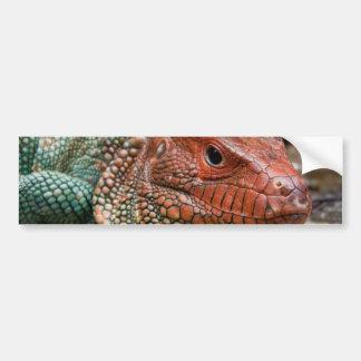 Lizard Bumper Stickers