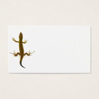 lizard business card
