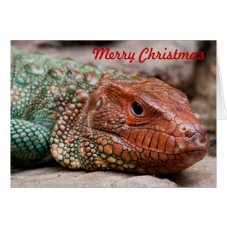 Lizard Christmas Card