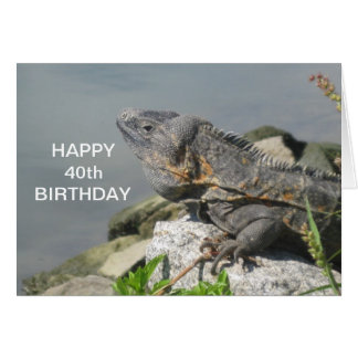 Lizard On A Rock Happy Birthday Card