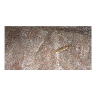 Lizard on Stone. Photo Greeting Card