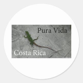 Lizard on Wall Costa Rica Pura Vida Classic Round Sticker