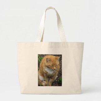 Lizard Orange Tiger Cat Canvas Bag
