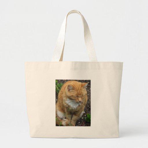 Lizard, Orange Tiger  Cat Canvas Bag
