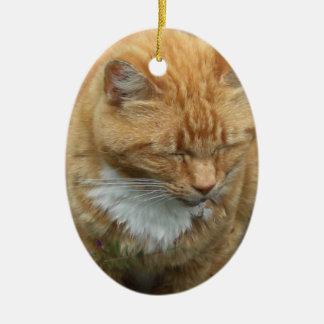 Lizard, Orange Tiger  Cat Christmas Ornament