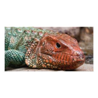Lizard Custom Photo Card