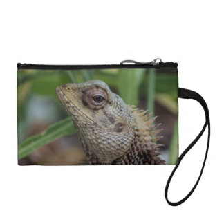 Lizard Reptile Nature Photography Coin Purse