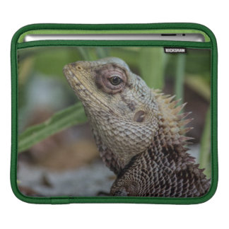 Lizard Reptile Nature Photography iPad Sleeve