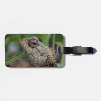 Lizard Reptile Nature Photography Luggage Tag
