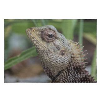 Lizard Reptile Nature Photography Placemat