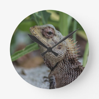 Lizard Reptile Nature Photography Round Clock