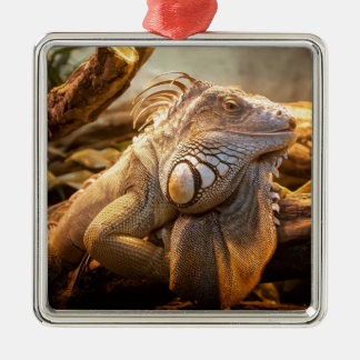 Lizard Up Close Christmas Ornament