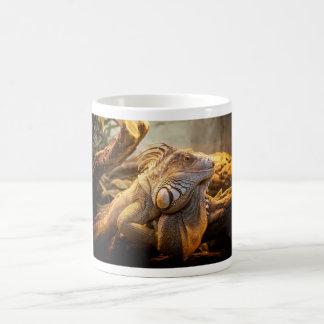 Lizard Up Close Coffee Mug