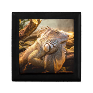 Lizard Up Close Gift Box