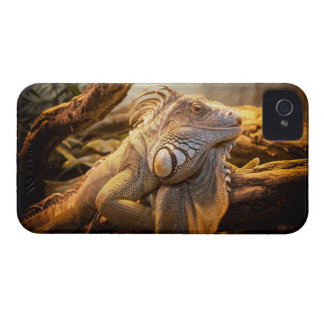 Lizard Up Close iPhone 4 Cover
