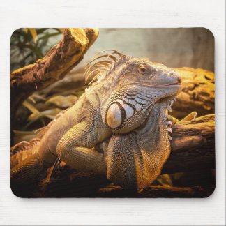 Lizard Up Close Mouse Pad