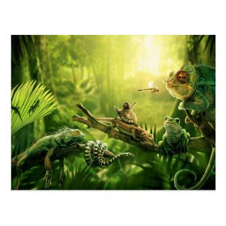 Lizards Frogs Jungle Reptiles Landscape Postcards