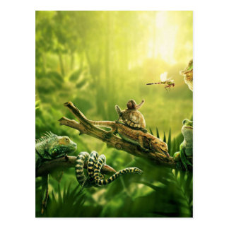 Lizards Frogs Jungle Reptiles Landscape Postcard