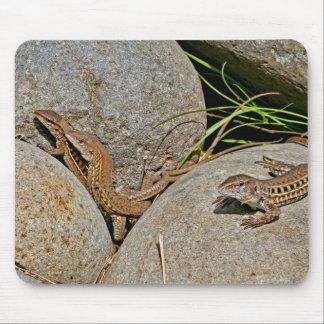 Lizards Mating Mousepad
