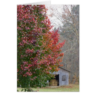 Liz's Barn in Fall Card