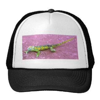 lizzard cap