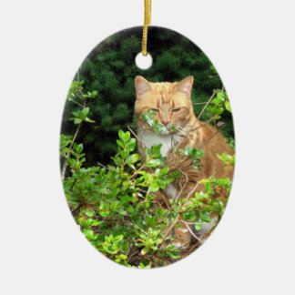 Lizzie, the cat, in the Front Yard Christmas Ornament