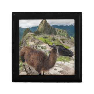 Llama At Machu Picchu, Aguas Calientes, Peru Gift Box