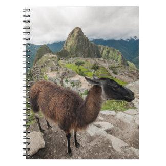 Llama At Machu Picchu, Aguas Calientes, Peru Spiral Notebook