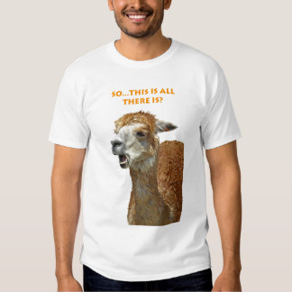 Llama chewing straw all there is shirts