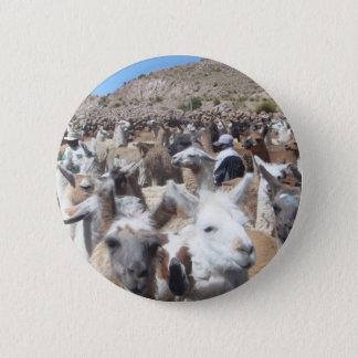 Llama Disco 6 Cm Round Badge