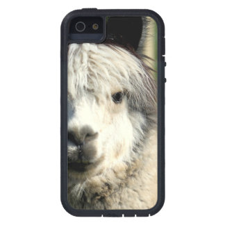 Llama Face Tough Xtreme iPhone 5 Case
