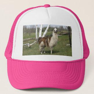 Llama Hat