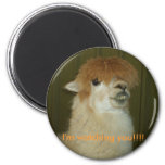 Llama, I'm watching you!!!! 6 Cm Round Magnet