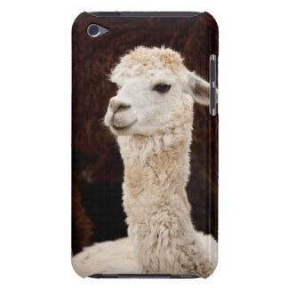 Llama iPod Touch Covers